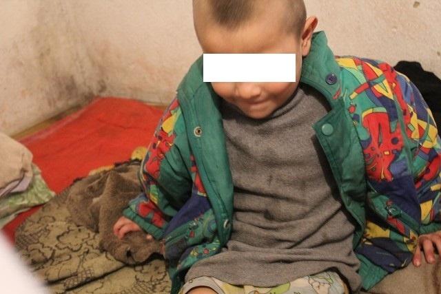 Волонтер: Дети в Сокулуке ели собачатину, чтобы не умереть с голоду