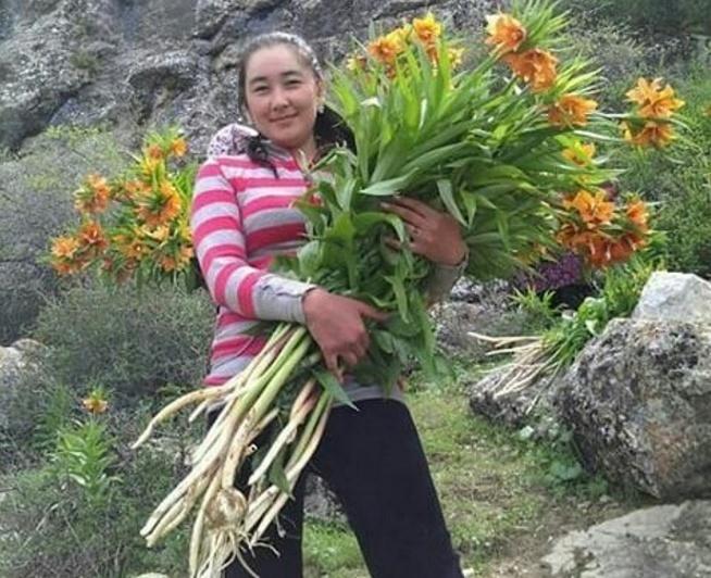 Девушка фотографируется с вырванным цветком Айгуль. Интернет негодует